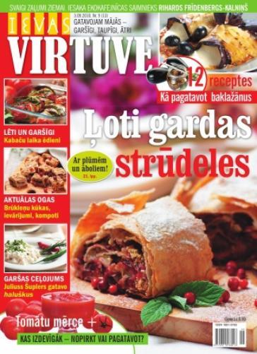 IEVAS VIRTUVE Nr. 9 2010