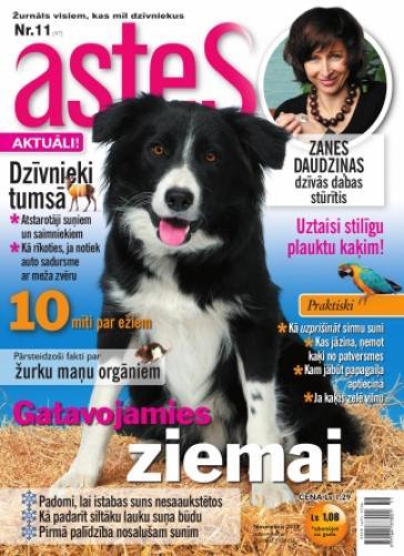 ASTES Nr. 11 2010