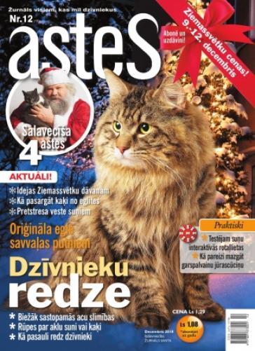 ASTES Nr. 12 2010