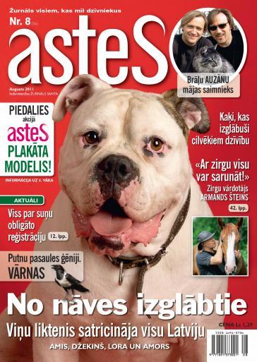 ASTES Nr. 8 2011