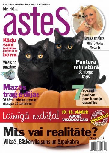 ASTES Nr. 10 2011