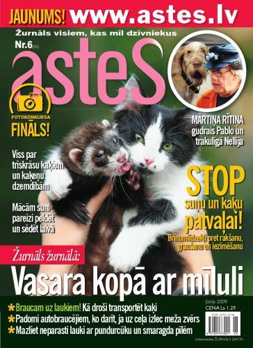 ASTES Nr. 6 2009