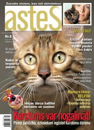 ASTES Nr. 8 2008