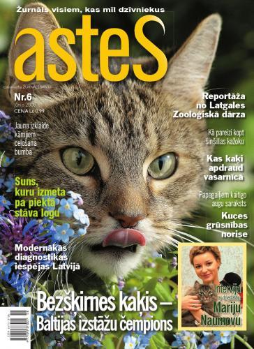 ASTES Nr. 6 2008