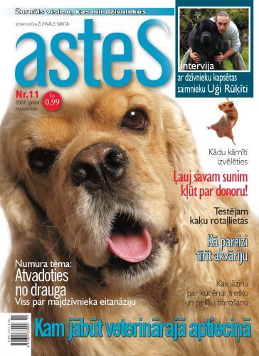 ASTES Nr. 11 2007