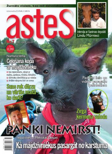ASTES Nr. 7 2007