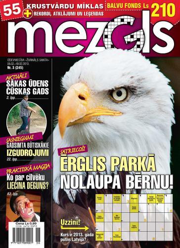 MEZGLS Nr. 3 2013
