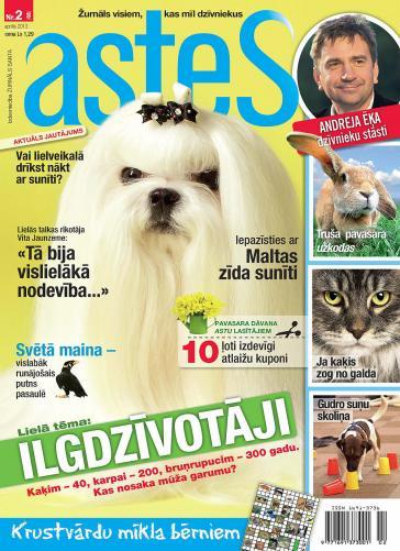 ASTES Nr. 2 2013