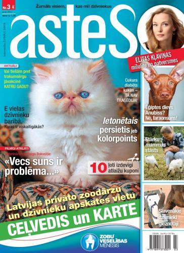 ASTES Nr. 3 2013