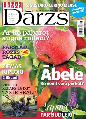 IEVAS DĀRZS Nr. 9 2017