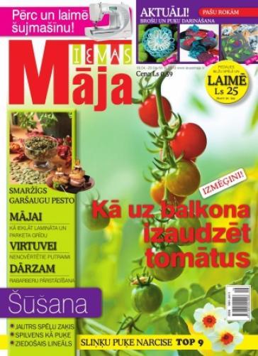 IEVAS MĀJA Nr. 8 2010