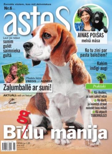 ASTES Nr. 6 2010